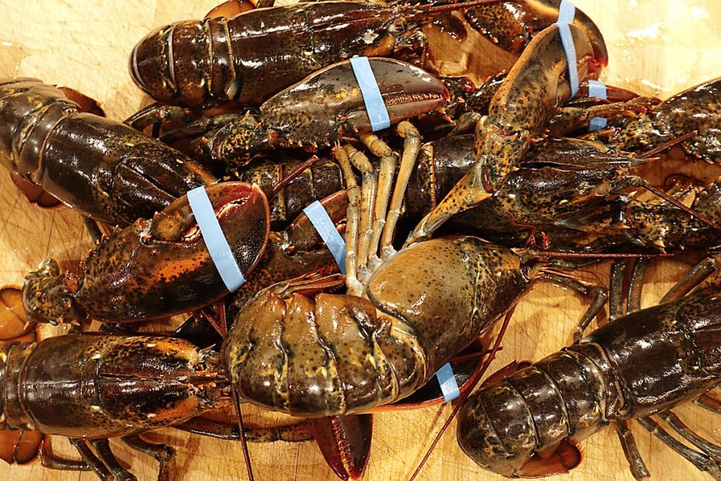lobsterssm
